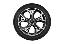 """Winter wheels alloy 19"""""""