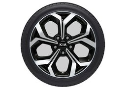 "Winter wheels alloy 17"" without TPMS (Check application)"