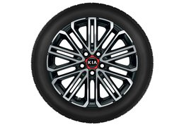 "Winter wheels alloy 18"" with TPMS sensors, GT"