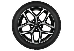 "Winter wheels alloy 17"" with TPMS sensors"