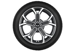 """Winter wheels alloy 18"""" + TPMS, XCeed  (Check application)"""