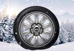 """Winter wheels steel 17"""""""