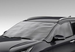 Front and side window protection