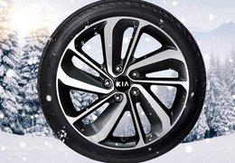 """Winter wheels alloy 18"""" Niro HEV"""