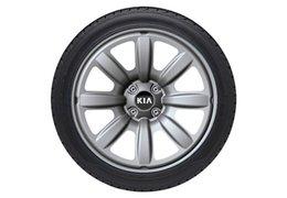 "Winter wheels steel design 17"""