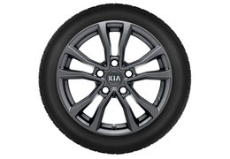 "Winter wheels alloy 16"" without TPMS (Check application)"