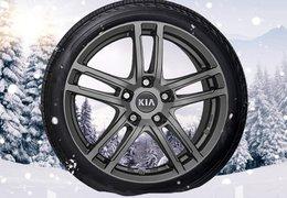 """Winter wheels alloy 17"""" Niro EV, Soul EV"""
